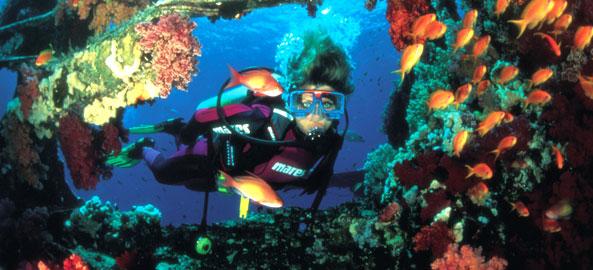 Nurkowanie Bali